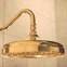 polished brass rain shower head