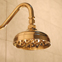small polished brass rain shower head
